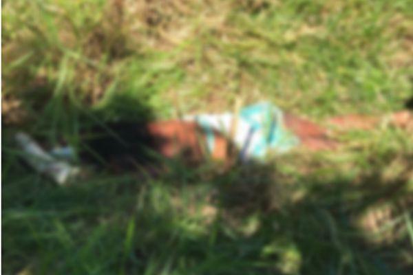 A mulher ainda não foi identificada (Foto: Divulgação)