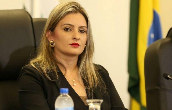Ana Novais, vereadora autora da lei, espera mais proteção para as mulheres vítimas de violência (Foto: Divulgação)
