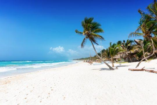 Beach RETA2