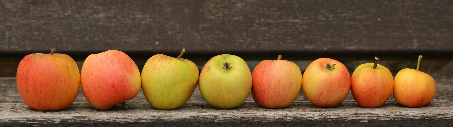 Apple 1675775 1920
