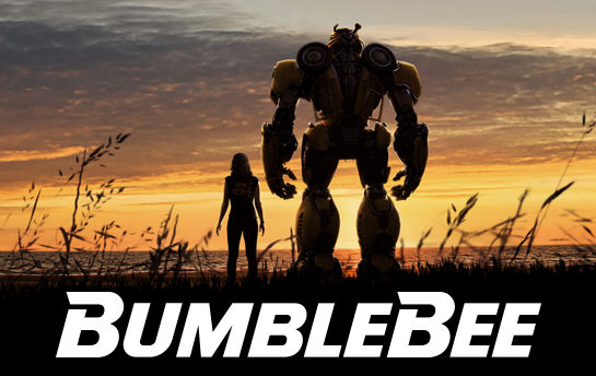 Bumblebee | Display Ad Campaign