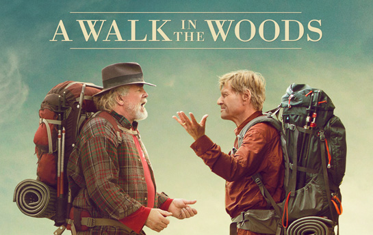 A Walk in the Woods | Display Ad Campaign