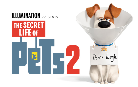 The Secret Life of Pets 2 | Display Ad Campaign