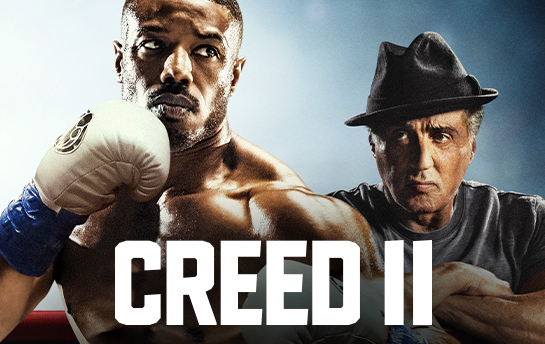 Creed II | Display Ad Campaign