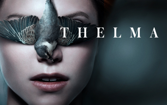 Thelma | Display Ad Campaign