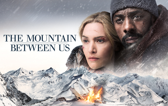 Mountain Between Us | Display Ad Campaign
