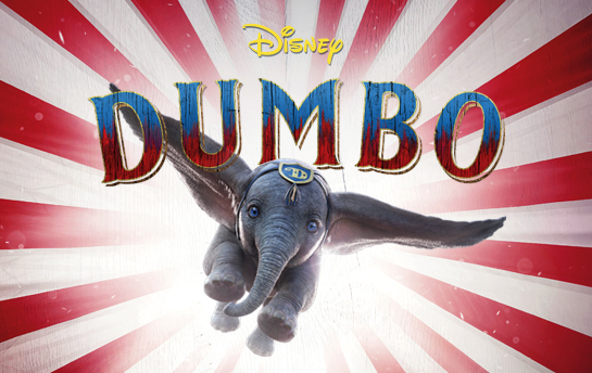 Dumbo | Social & Display Ad Campaign