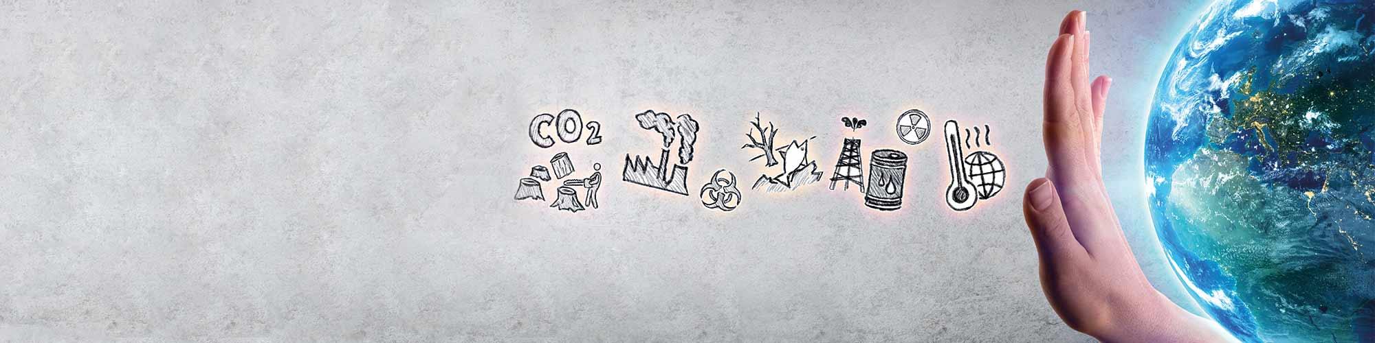 Talk Positiva: Por modelo econômico mais sustentável, Daniel Wahl lança livro sobre cultura regenerativa