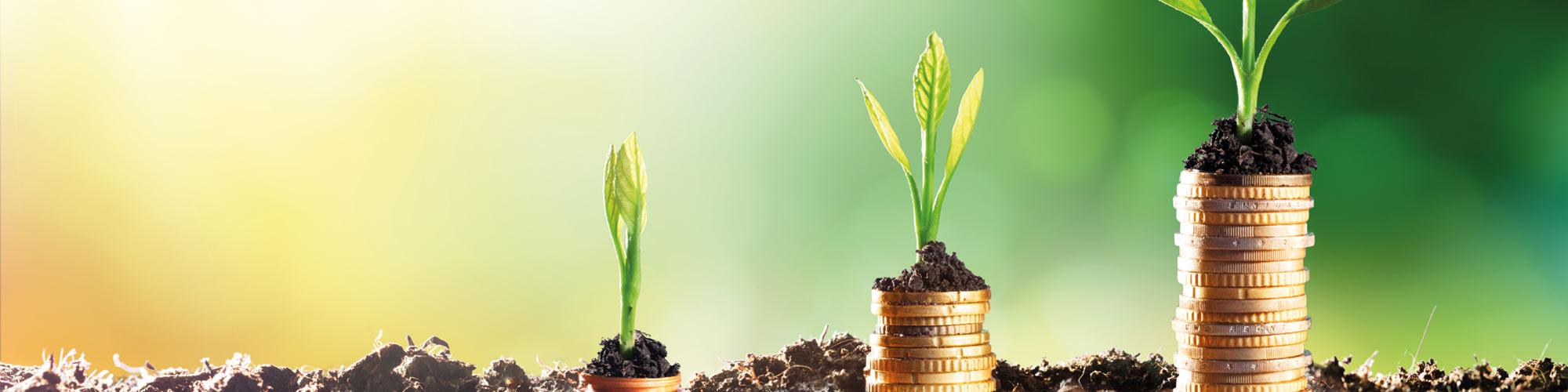 Encontro reflete sobre necessidades financeiras e propósito de vida após os 50 anos