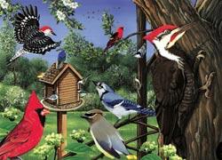 Around The Birdfeeder Educational Tray Puzzle