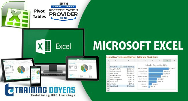 webinar on microsoft excel detailed data analysis with pivot tables