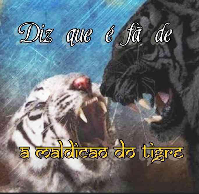 Diz Que é Fã De A Maldição Do Tigre