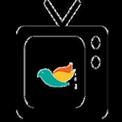 Depto Audio e Video Culto ao VIVO