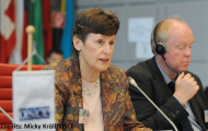 High Representative's remarks at the OSCE meeting on small arms and ammunition