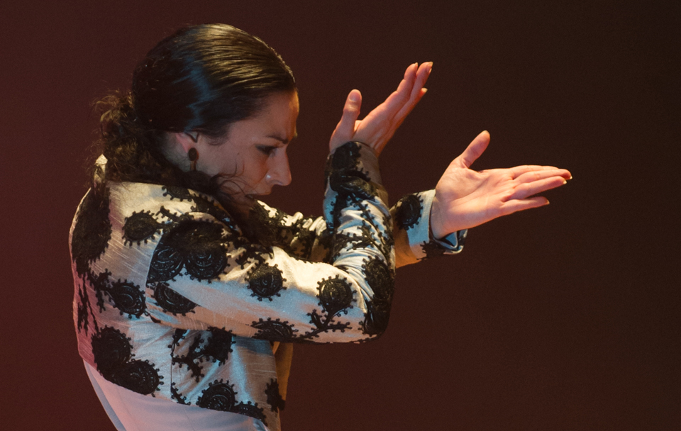 Flamenco Dance: Online classes