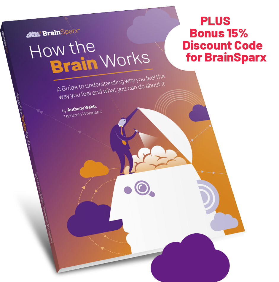 Ebook on How the Brain Works