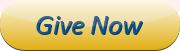 ConvergePay donate button
