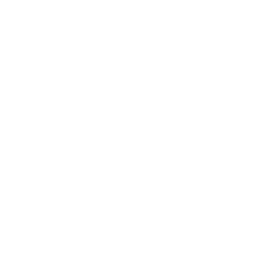 Playit Guitar