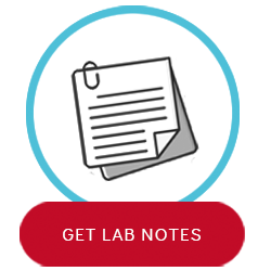 View the Lab Notes