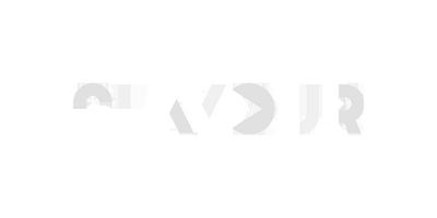 logo flavour