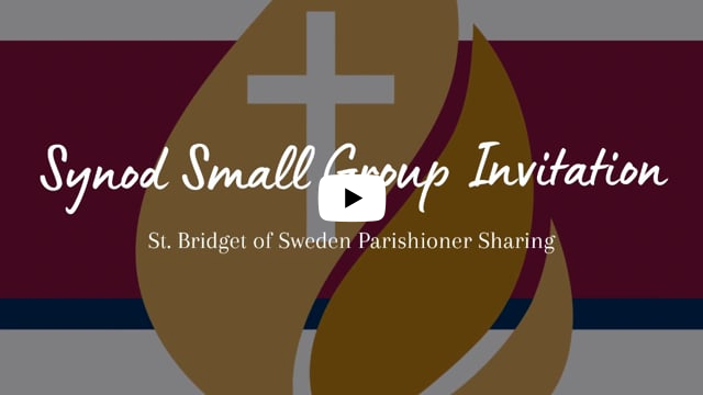Invite to Synod Small Groups