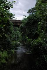 greenway-bridge.jpg