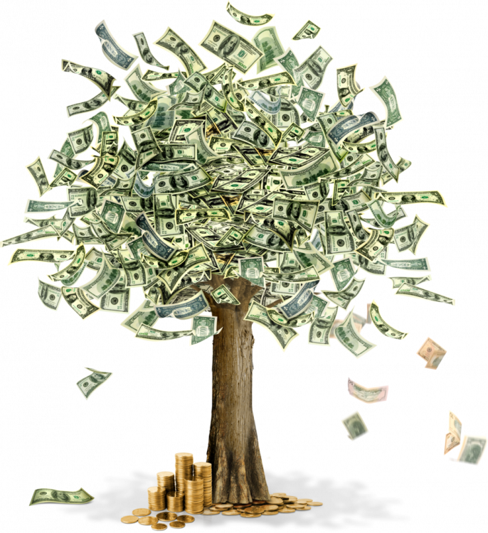 money-tree-936x1024.png