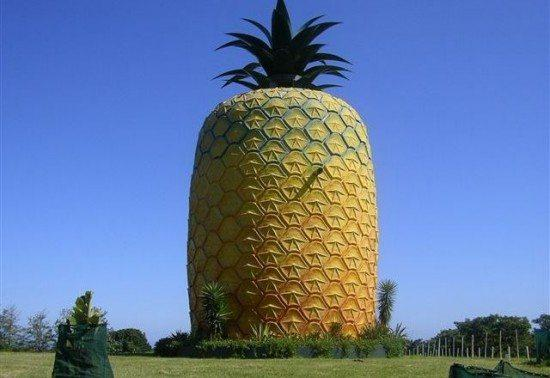 pineapplebldg.jpg