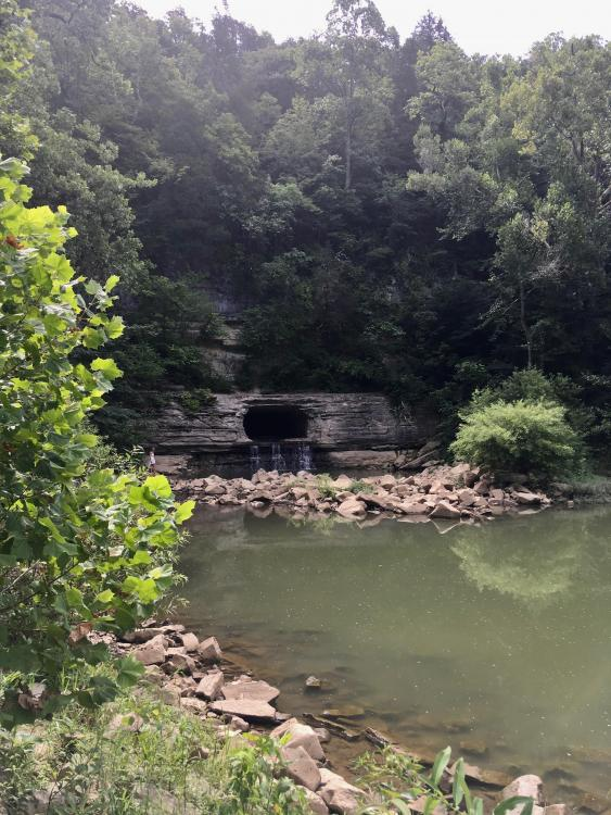 Narrows of the Harpeth, July 28, 2020, 9.jpg