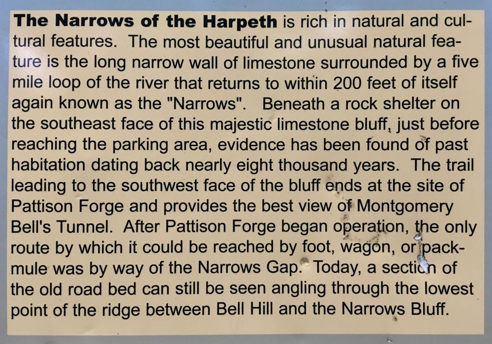 Narrows of the Harpeth, July 28, 2020, 12.jpg