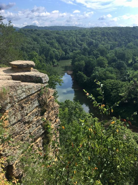 Narrows of the Harpeth, July 28, 2020, 1.jpg