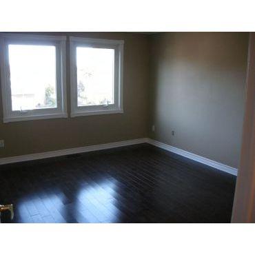 Hardwood floors and mouldings