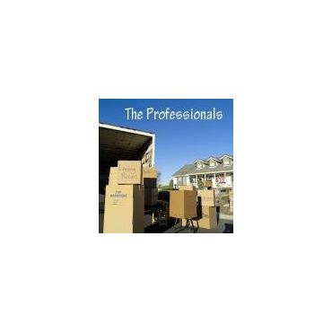 The Professionals logo