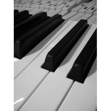 WALKER'S PIANO SERVICES PROFILE.logo