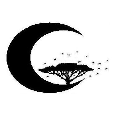 Dreamscape PROFILE.logo