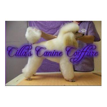 Cillas Canine Coiffure logo