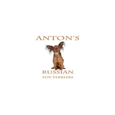 Antons Russian Toy Terriers logo