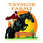 Taymor Farms - English Horseback Riding Lessons
