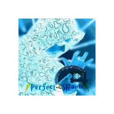 Perfect Magic logo