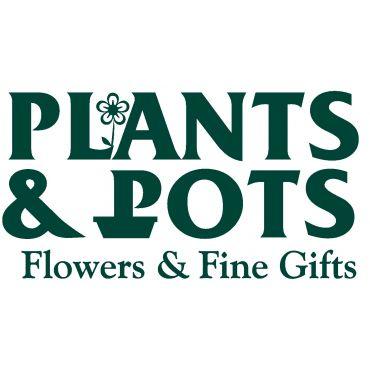 Plants & Pots, Flowers & Fine Gifts logo