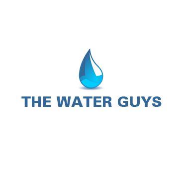 The Water Guys PROFILE.logo