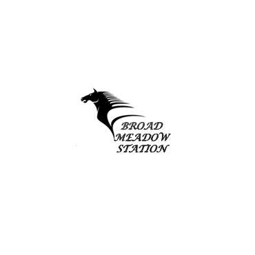 Broad Meadow Station logo