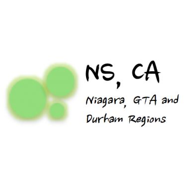 NS Chartered Accountant PROFILE.logo