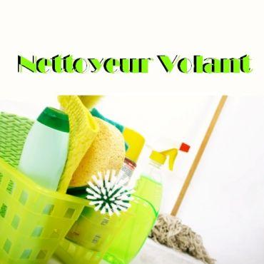 Nettoyeur Volant logo
