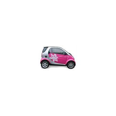 ALL SMART CARS SERVICED HERE