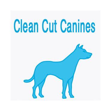 Clean Cut Canines logo
