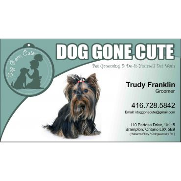 Dog gone cute in brampton on 4167285842 411 dog gone cute solutioingenieria Gallery
