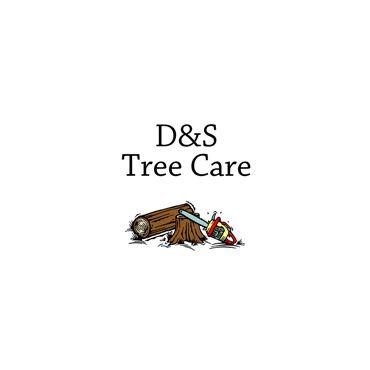 D & S Tree Care logo