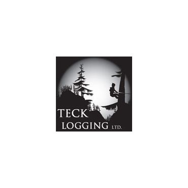 Teck logging Ltd. logo