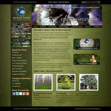 Website Design | World Tree Technologies